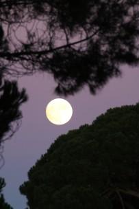 a-lua1-13-11-16