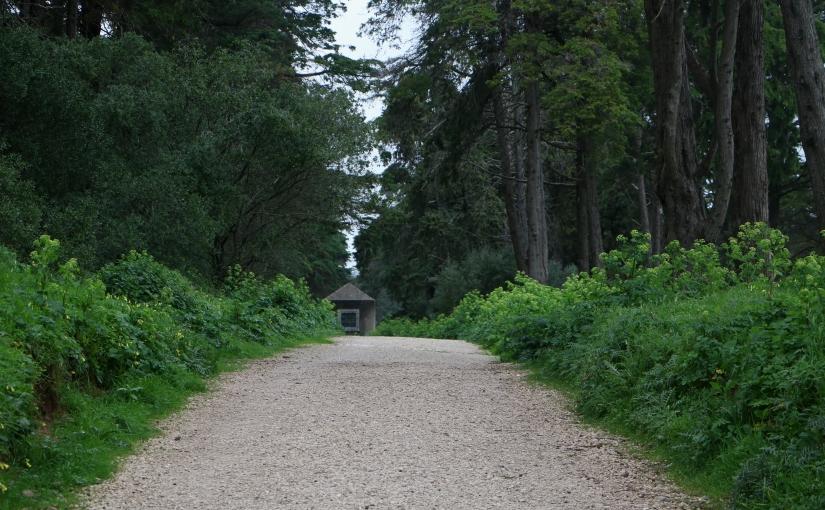 Escapadelas – Parque florestal de Monsanto,Lisboa