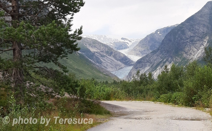 Noruega – Jostedalsbreen National Park – Nigardsbreen – Dia12